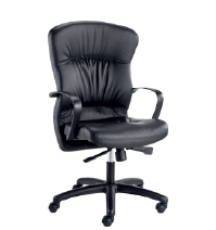 Bodyline Ruched Highback Chair Image