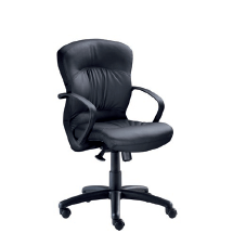 Bodyline Ruched Midback Chair Image